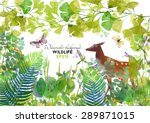 Wildlife. Watercolor Vector...