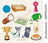 some cute vector stuff for pets | Shutterstock .eps vector #289903244