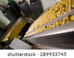 photos of olives factory in... | Shutterstock . vector #289933745
