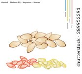healthcare concept  almonds... | Shutterstock .eps vector #289952291