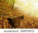 The Autumn Misty And Sunny...