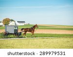 amish horse and buggy   Shutterstock . vector #289979531