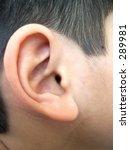 ear of a ten year old boy | Shutterstock . vector #289981