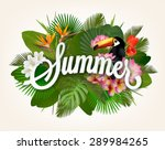 summer typographical background ... | Shutterstock .eps vector #289984265