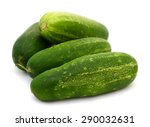 green cucumber on the white... | Shutterstock . vector #290032631