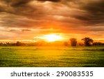 rice field beautiful natural at ... | Shutterstock . vector #290083535