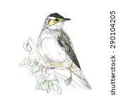 Watercolor Bird. Vector...