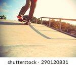 skateboarder legs skateboarding ... | Shutterstock . vector #290120831