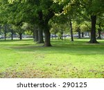autumn leaves  city goes by | Shutterstock . vector #290125