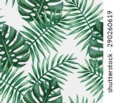 watercolor tropical palm leaves ... | Shutterstock .eps vector #290260619