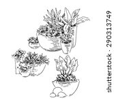Flowers Pots Sketch Collection...