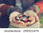 Conkers In Female Hands