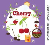 vector illustration of a garden ... | Shutterstock .eps vector #290331554