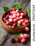 karanda fruit  carissa carandas ... | Shutterstock . vector #290373269