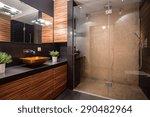 new modern bathroom with fancy... | Shutterstock . vector #290482964