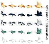 dove bird set of pigeons in... | Shutterstock .eps vector #290567621