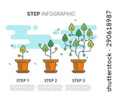 Step Infographic With Plants....
