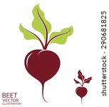 beet. isolated vegetables on...