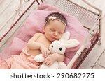 newborn baby girl posing with... | Shutterstock . vector #290682275