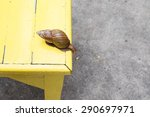 Small photo of Snail with acrophobia.