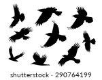 Set Of Silhouette Flying Raven...