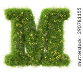 alphabet from the green grass... | Shutterstock . vector #290781155