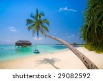 Small photo of Beautiful tropical beach scenery with coconut palm tree stretching over the turquoise ocean (more tropical beaches in my portfolio)