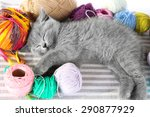 Stock photo cute gray kitten with colorful balls of thread on striped carpet closeup 290877929