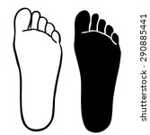 foot outline and silhouette... | Shutterstock .eps vector #290885441