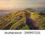 Mountain Path Through Blooming...