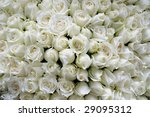 background of beautiful white...   Shutterstock . vector #29095312