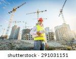 portrait of construction...   Shutterstock . vector #291031151