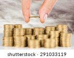 loan  profit  rate. | Shutterstock . vector #291033119