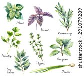 Watercolor Collection Of Fresh...