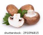 mushrooms isolated on white... | Shutterstock . vector #291096815