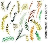 vector watercolor branches | Shutterstock .eps vector #291120779