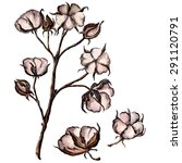 vector watercolor cotton | Shutterstock .eps vector #291120791