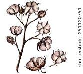vector watercolor cotton | Shutterstock .eps vector #291120791