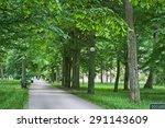 beautiful summer landscape with ... | Shutterstock . vector #291143609