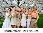 girls with glass of champagne... | Shutterstock . vector #291223625