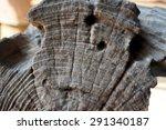 lineament is fun.   Shutterstock . vector #291340187