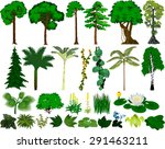 Vector Set Of Different Trees