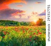 dramatic sunrise overcast over... | Shutterstock . vector #291517751