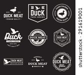 vector set of premium duck meat ... | Shutterstock .eps vector #291619001