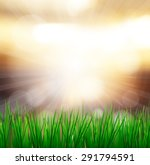fresh spring green grass with... | Shutterstock . vector #291794591