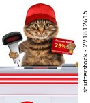 Small photo of Funny cat working as a cashier in a supermarket.