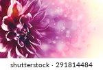 beautiful lotus flower ... | Shutterstock . vector #291814484