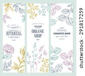 botanical banner collection.... | Shutterstock .eps vector #291817259