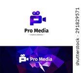 vector trendy low poly camera... | Shutterstock .eps vector #291829571
