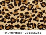 brown leopard fur pattern.... | Shutterstock . vector #291866261